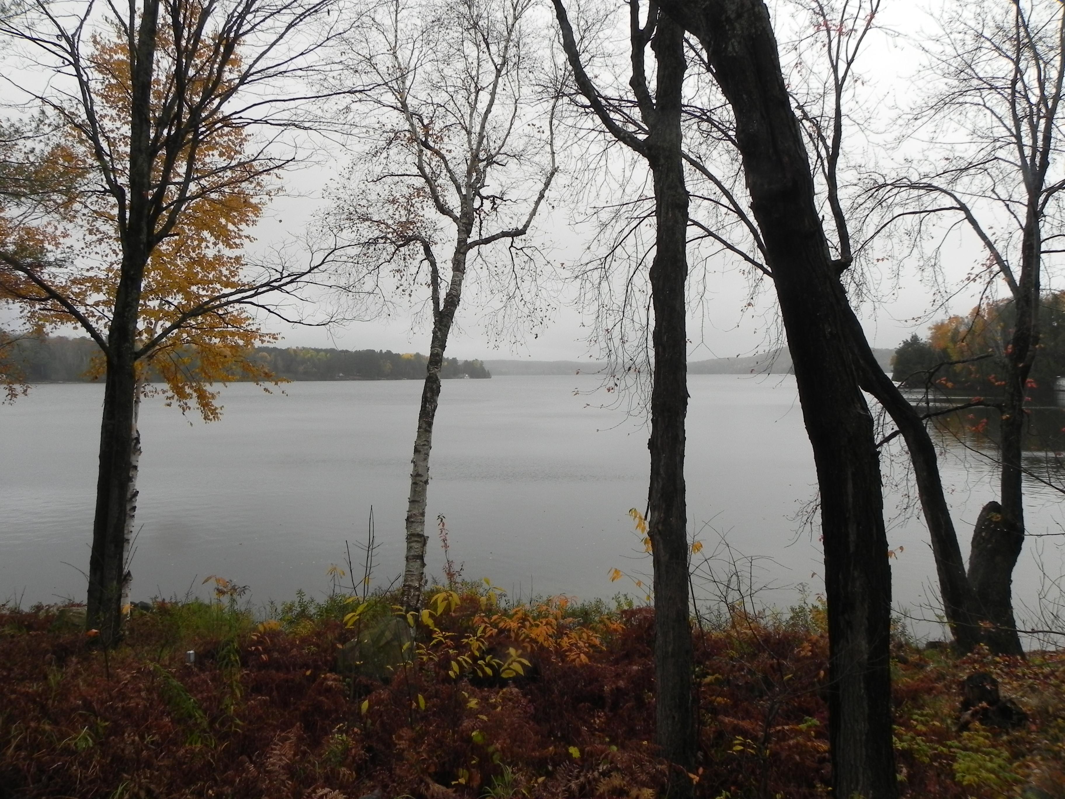 Lake of Bays Addtion - Lake View